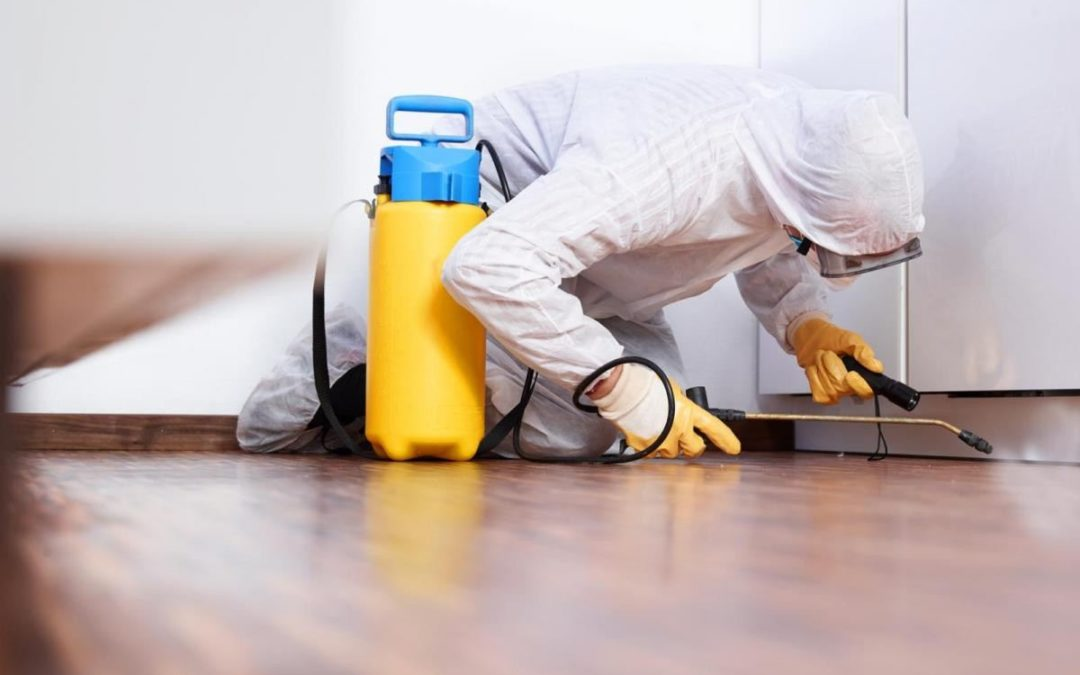 sanitizing & disinfection cleaning service in New York City