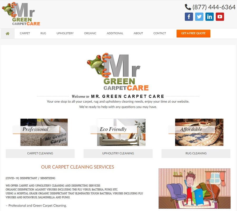 mr green carpet care organic carpet cleaning NYC